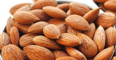 Bitter Apricot Kernels